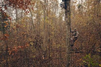 Hunting from elevated tree stands is a great way to help beat the whitetail's keen eyesight and sense of smell, but they also can be dangerous unless proper safety measures are taken to prevent falls. (Photo courtesy of Hunter Safety Systems)