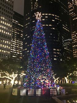 Christmas Tree for City of Houston