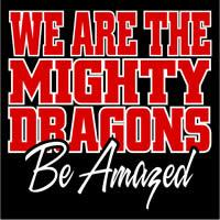 Dragon Spirit Back
